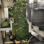 Living Wall at University of Guelph-Humber