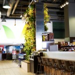 Living Wall at Longo's Grocery Store
