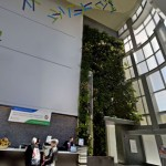 Living Wall at John Theuer Cancer Center