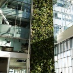 Living Wall Biofilter at Corus Quay