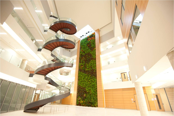 Living wall biofilter in the atrium at Drexel University